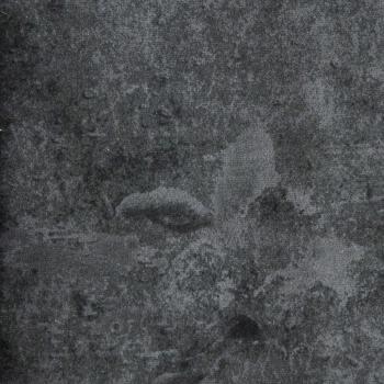 fleur-antraciet-1