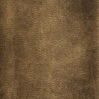 wrangler-mustard-06